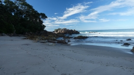 Ocean Spokojny, Tauranga